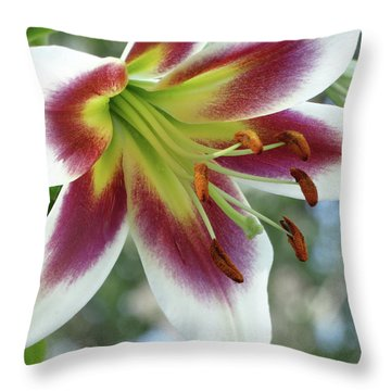 Oriental Lily In Summer Sunset Throw Pillow