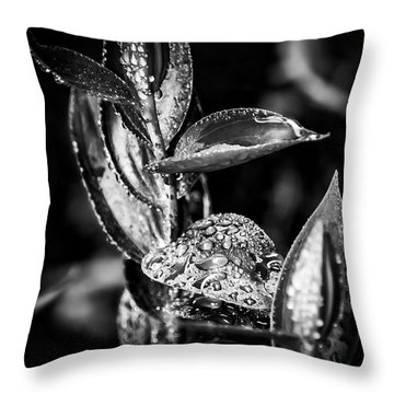 Oriental Lily Kissed By Rainfall - Black And White Throw Pillow