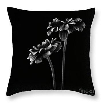Black Background Throw Pillows