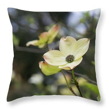 Ormonde Dogwood Throw Pillow