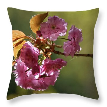 Ornamental Cherry Blossoms - Throw Pillow