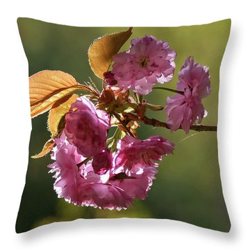Ornamental Cherry Blossoms - Throw Pillow