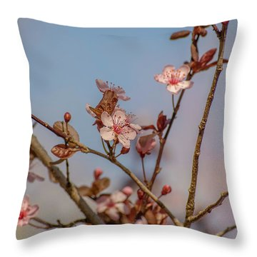 Purple Leaf Sandcherry Blossoms Throw Pillow