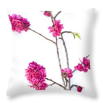 Throw Pillow featuring the photograph Ornamental Peach  by Elena Nosyreva