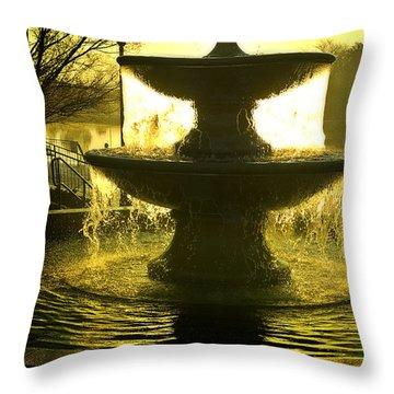 Oro Liquido Throw Pillow by Kat Besthorn
