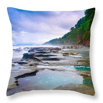 Osa Throw Pillow