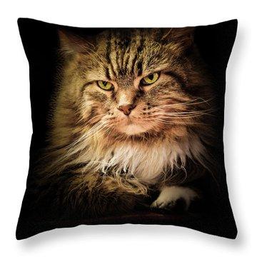 Oscar On Black Throw Pillow