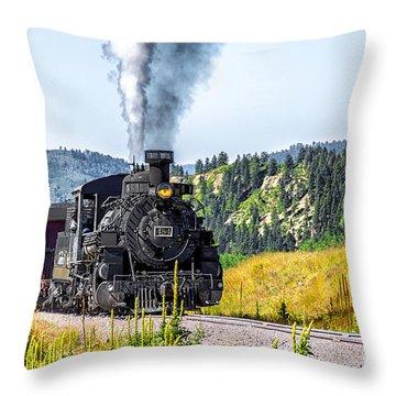 Osier Bound 484 Throw Pillow