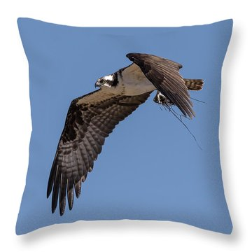 Throw Pillow featuring the photograph Osprey 2017-1 by Thomas Young