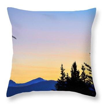 Osprey Against The Sunset Throw Pillow