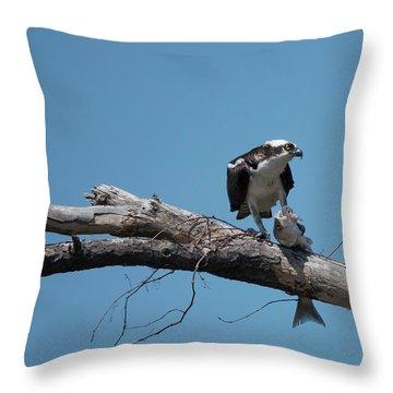 Osprey And Fish Throw Pillow