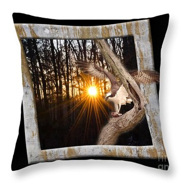 Osprey At Sunset  Black Throw Pillow by Donna Brown