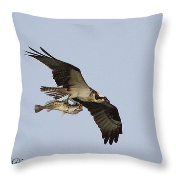 Osprey Catches A Fish Throw Pillow