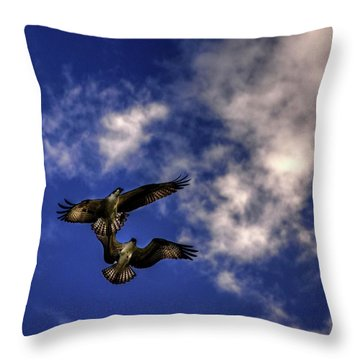 Throw Pillow featuring the photograph Osprey Dog Fight by Chrystal Mimbs