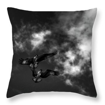 Throw Pillow featuring the photograph Osprey Dog Fight In Black And White by Chrystal Mimbs