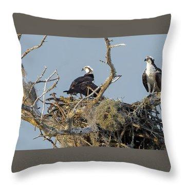 Osprey Family Throw Pillow