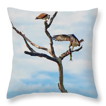 Osprey Feast Throw Pillow