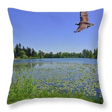 Osprey Fishing At Wapato Lake Throw Pillow