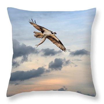 Osprey High Throw Pillow