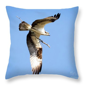 Throw Pillow featuring the photograph Osprey In Flight by Ricky L Jones