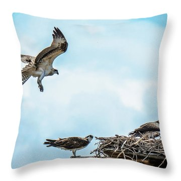 Throw Pillow featuring the photograph Osprey Incoming by Stephen  Johnson