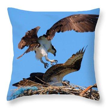 Osprey Mating Dance Throw Pillow