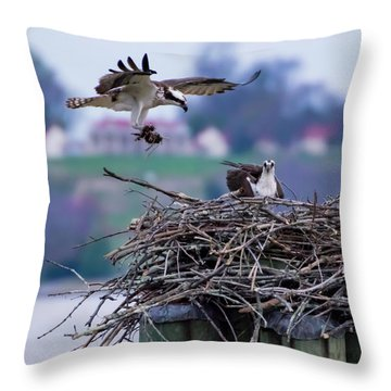Osprey Nest Building Throw Pillow