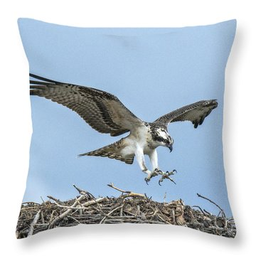 Throw Pillow featuring the photograph Osprey Nest Landing by Stephen  Johnson