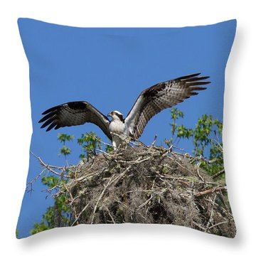 Osprey On Nest Wings Held High Throw Pillow