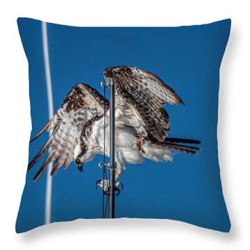 Osprey On The Boat Rod Throw Pillow