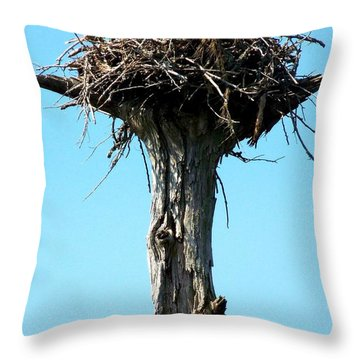 Osprey Point Throw Pillow by Karen Wiles