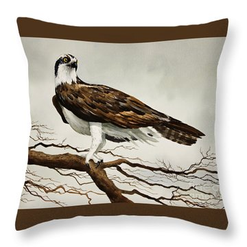Osprey Sea Hawk Throw Pillow by James Williamson