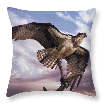 Osprey Wing Throw Pillow