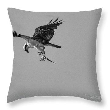 Osprey With Prey Throw Pillow