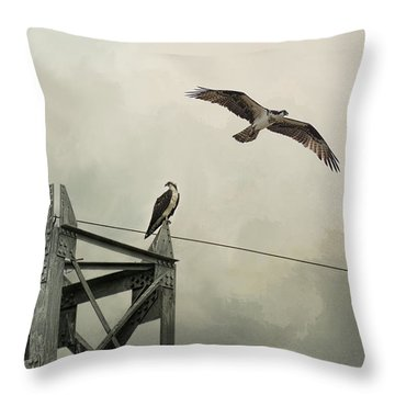 Ospreys At Pickwick Throw Pillow by Jai Johnson