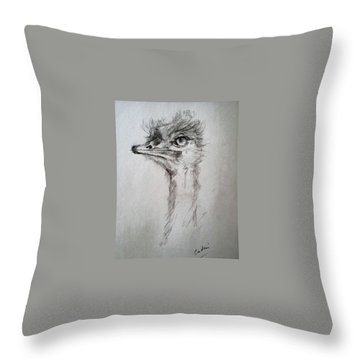 Ostrich Throw Pillow by Debora Cardaci