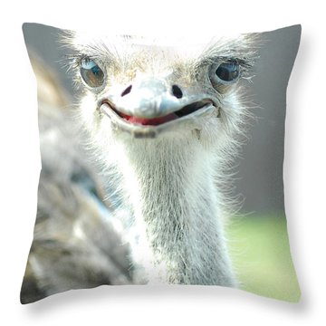 Ostrich Grin Throw Pillow