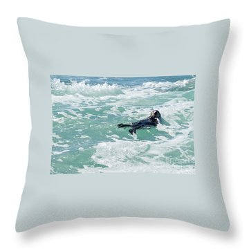 Otter At Montana De Oro Throw Pillow