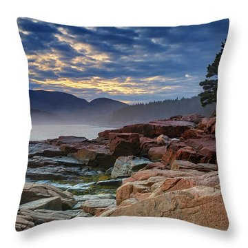 Otter Cove In The Mist Throw Pillow by Rick Berk