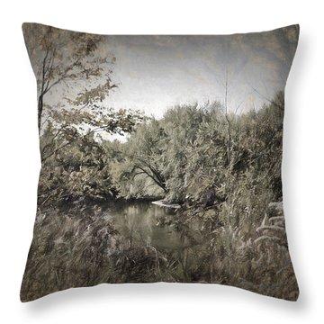 Otter Creek  Throw Pillow by Rena Trepanier