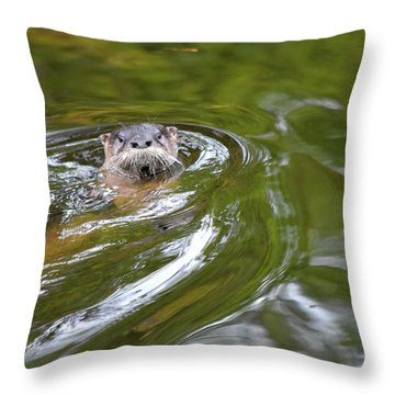 Otter In The Wotter Throw Pillow
