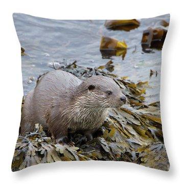 Otter On Seaweed Throw Pillow