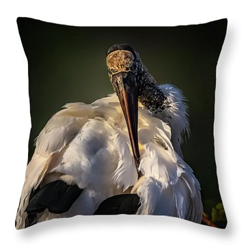 Ouch Throw Pillow by Cyndy Doty