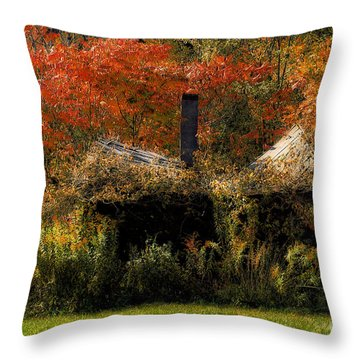Ouch Throw Pillow by Lois Bryan