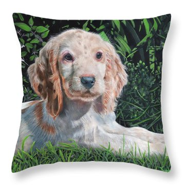 Our Archie Throw Pillow