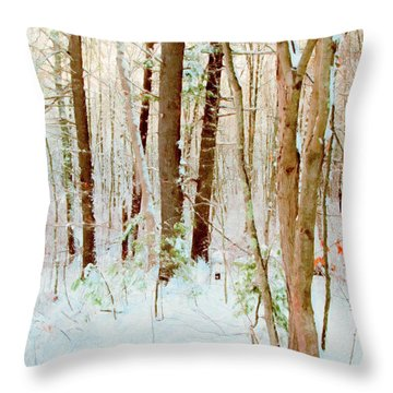 Our Backyard After The Snow Throw Pillow