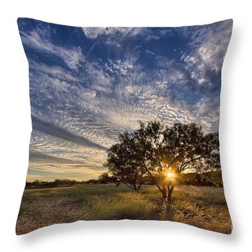 Our Backyard Throw Pillow