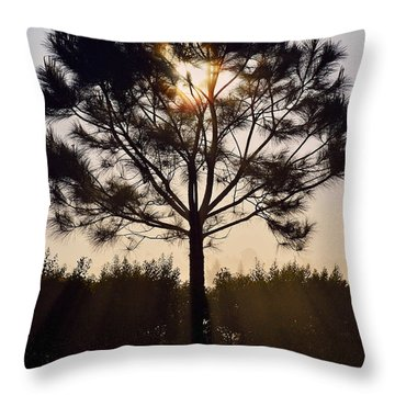 Our Borrowed Earth Throw Pillow