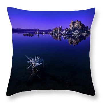 Our Desolate Earth Throw Pillow