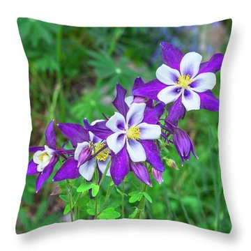 Our Gorgeous State Flower, Colorado Columbine  Throw Pillow